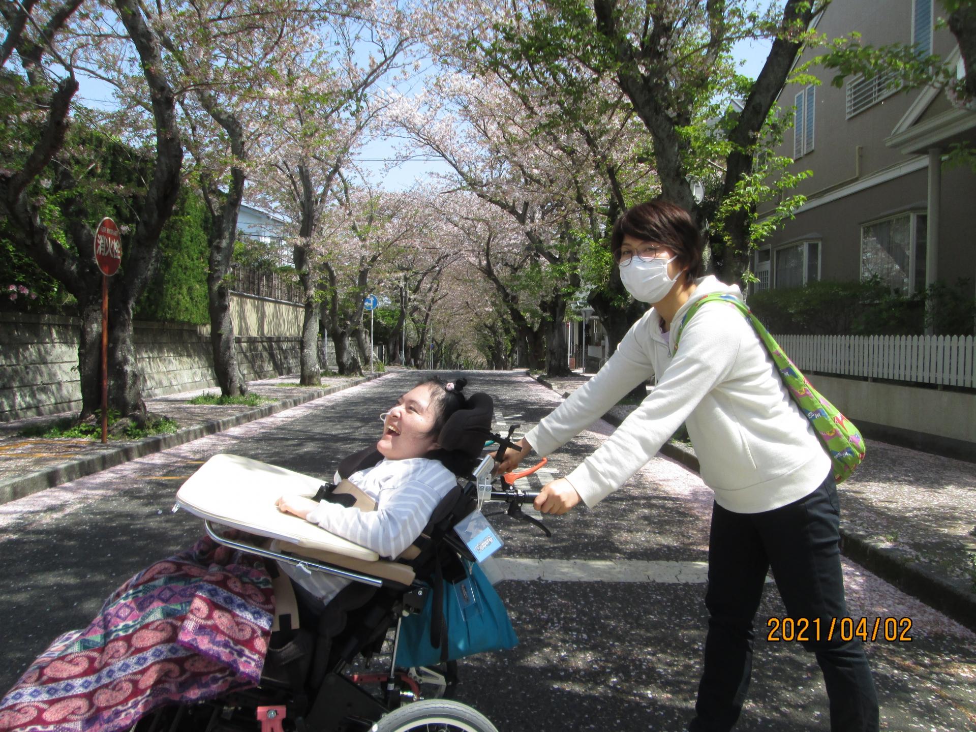 桜見ドライブ♡