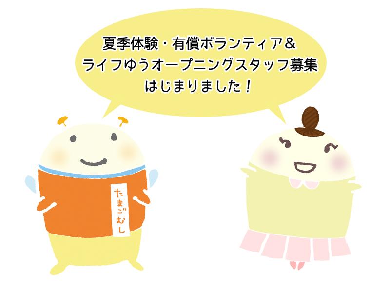 img_tamagomushi.jpg